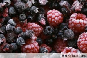 Früchte Eis frieren schwitzen
