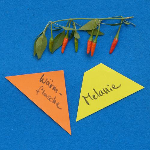 Melanie's Chili Recipe — Dishmaps